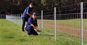 Installation of star picket and ringlock fencing-Dunsborough-Busselton-Vasse-Quindalup-Eagle Bay-Cowaramup-Margaret River and Yallingup-0418 903 281