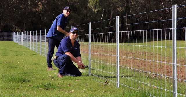 Installation of star picket and ringlock fencing-Dunsborough-Busselton-Vasse-Quindalup-Eagle Bay-Cowaramup-Margaret River and Yallingup-0418 903 281