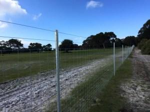Kangaroo fencing installation-Dunsborough-Busselton-Vasse-Quindalup-Eagle Bay-Cowaramup-Margaret River and Yallingup-0418 903 281