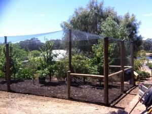 Orchard fencing-Dunsborough-Busselton-Vasse-Quindalup-Eagle Bay-Cowaramup-Margaret River and Yallingup-0418 903 281