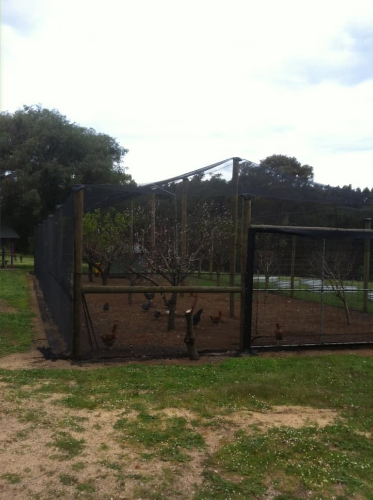 Orchard fencing installation-Dunsborough-Busselton-Vasse-Quindalup-Eagle Bay-Cowaramup-Margaret River and Yallingup-0418 903 281